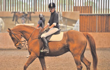 Sparsholt College Hampshire success at British Dressage Awards 2011