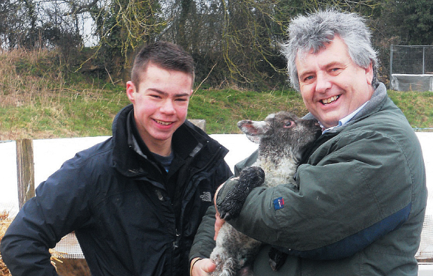 Young shepherd starts his own flock