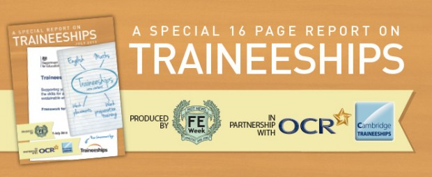 Special report on traineeships