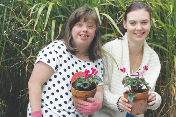 Plant sale raises funds for Children in Need