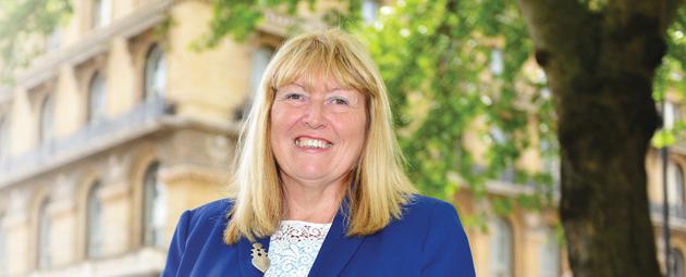 Ex-FE chief Dr Pember picks up on commissioner advice