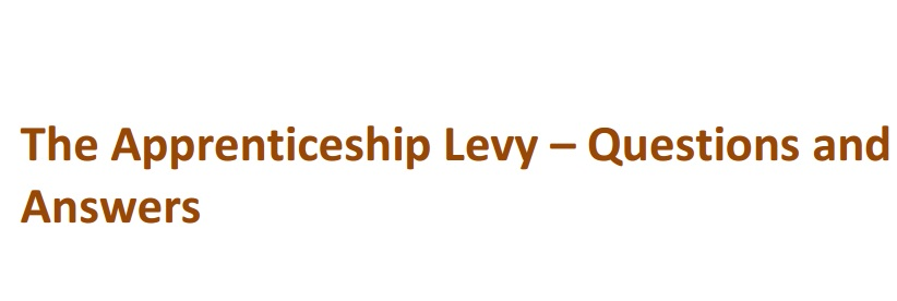 AELP urges government to 'wait three or four years' before bringing in apprenticeship levy