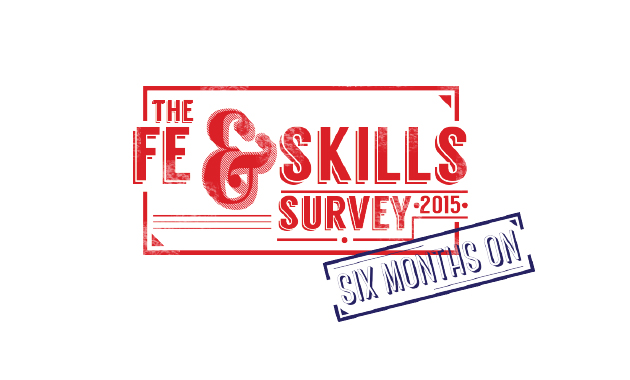 'Not only a car crash, but a multiple pile-up' — the FE sector view revisited six months after 2015 survey