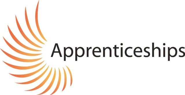 Public Accounts Committee to scrutinise apprenticeships