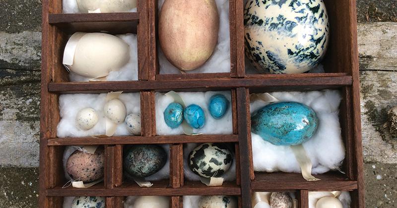 Charlie egg-cels at art exhibition