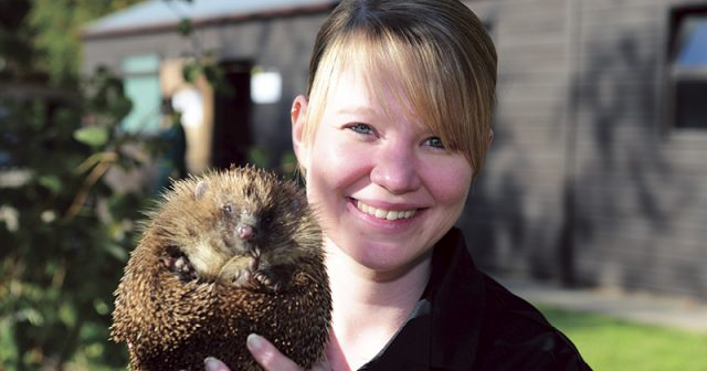 Derby College's new course in hedgehog care