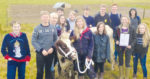 Dairy cows recognised for over a decade of service