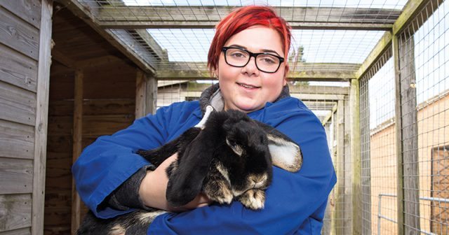 Lonely rabbit finds love again at college's animal care centre