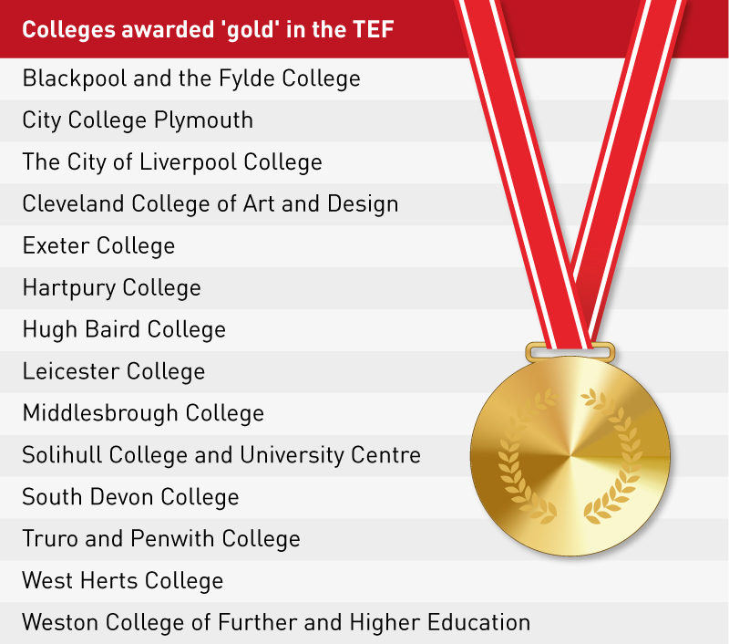 Gold standard for 14 colleges with HE teaching