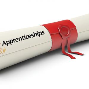 Horror show for degree apprenticeships