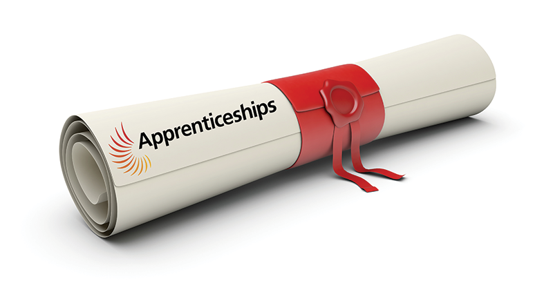 Horror show for degree apprenticeships
