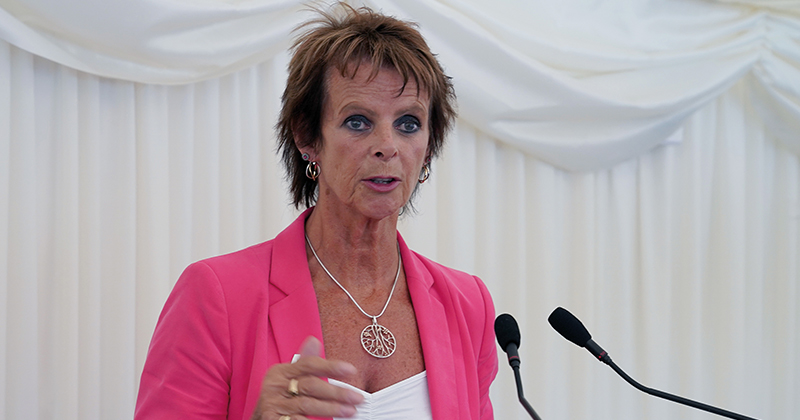 Degree apprenticeships a 'concern', says skills minister