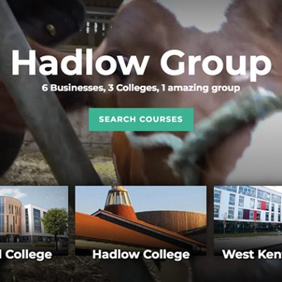 REVEALED: £26.6m cost of Hadlow Group transfer and how five colleges were bailed out to avoid insolvency