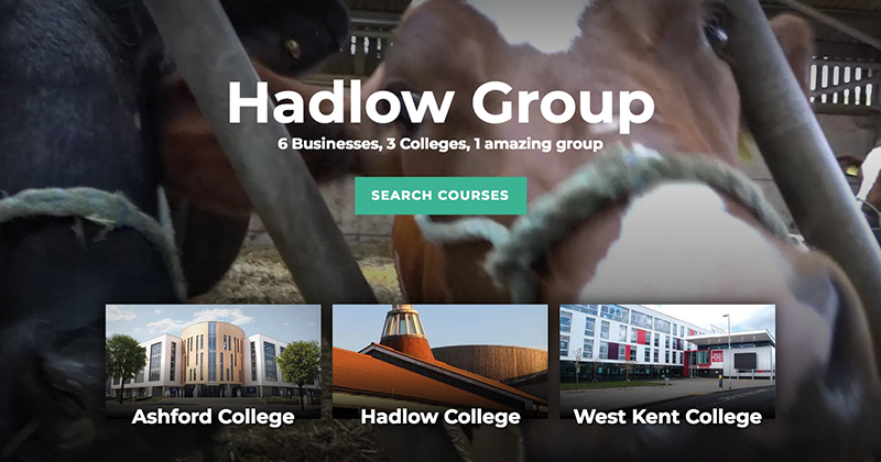 Hadlow board inexperienced and in meltdown