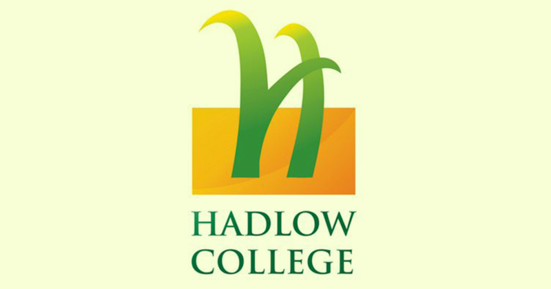 Insolvency Service investigating Hadlow College directors